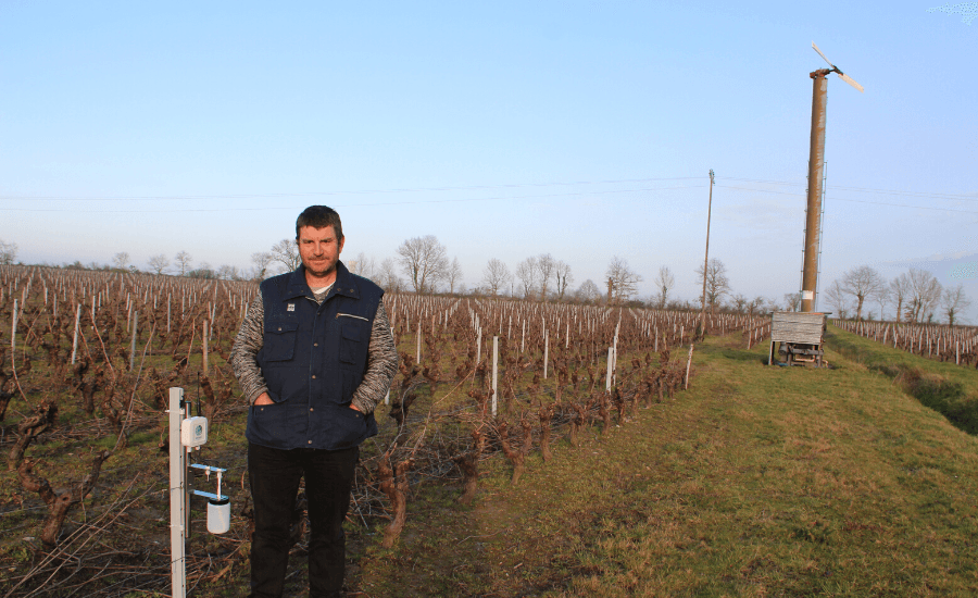 Un viticulteur utilise le capteur gel de weenat