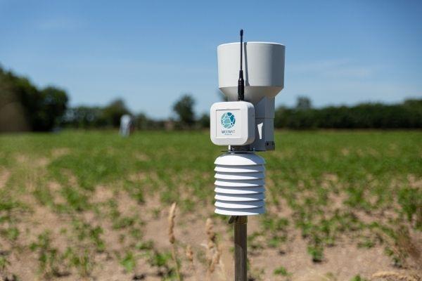 Le pluviomètre agricole Weenat dans un champ de soja