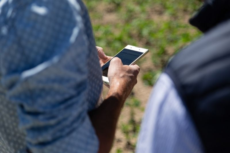 L'application météo agricole Weenat aide les agriculteurs au quotidien